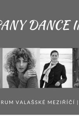 D-company Dance Intensive/taneční workshopy