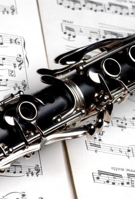 Koncert žáků třídy dechových nástrojů